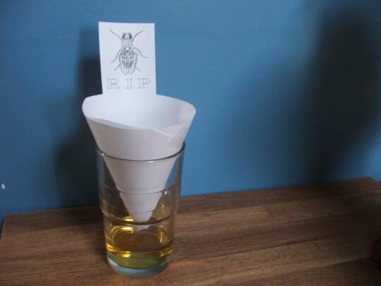 Ловушка для мух своими руками из пластиковой бутылки