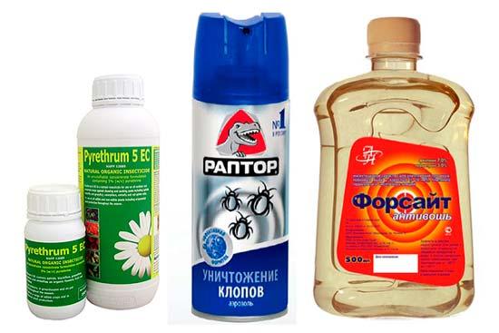 Химические средства от клопов: фото