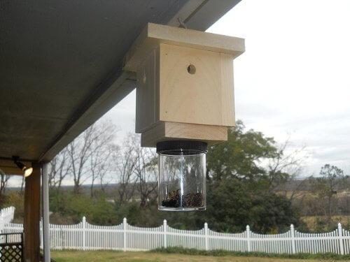 Как избавиться от пчел-плотников (древесных пчел): обзор лучших ловушек