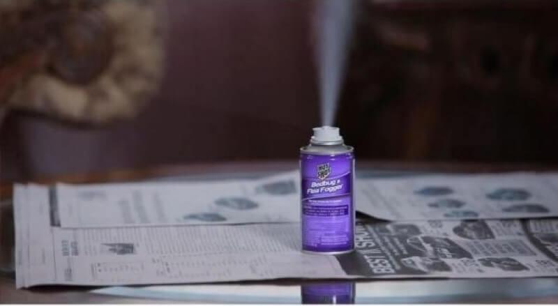 Cредство от блох в домашних условиях. Как истребить кровососов: лучшие спреи, ловушки и дымовые шашки