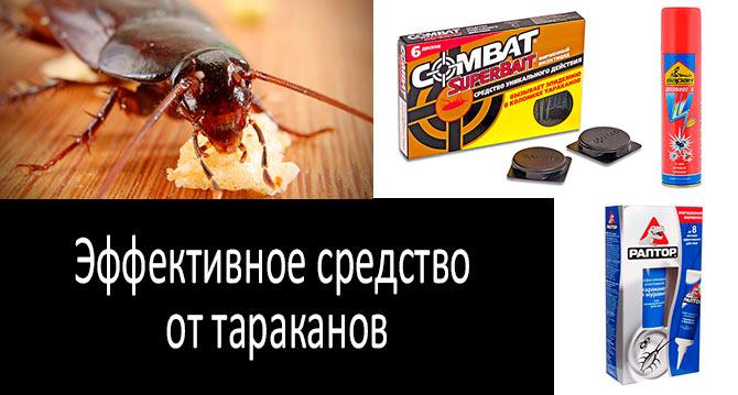 Эффективное средство от тараканов: фото