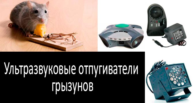 ультразвуковые отпугиватели грызунов электрокот