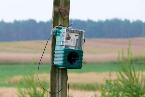 ультразвуковой отпугиватель птиц самодельный