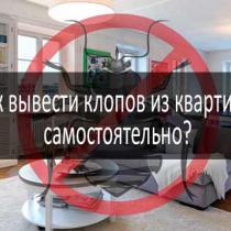Как избавиться от мошек в квартире?